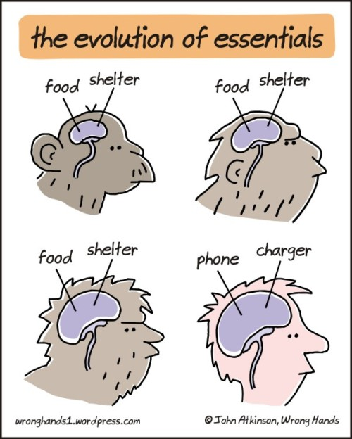 the evolution of essentials