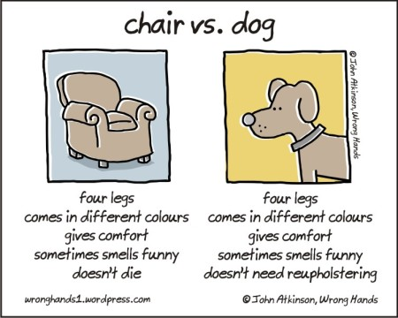 chair vs dog