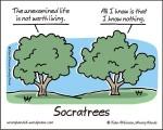 Socratrees