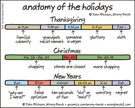 anatomy of the holidays