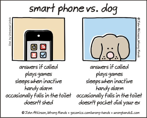 smart phone vs dog