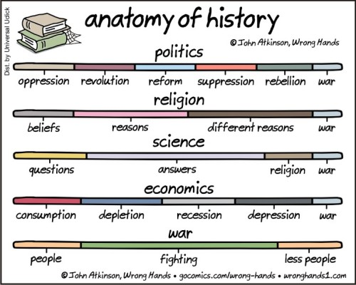 anatomy of the history