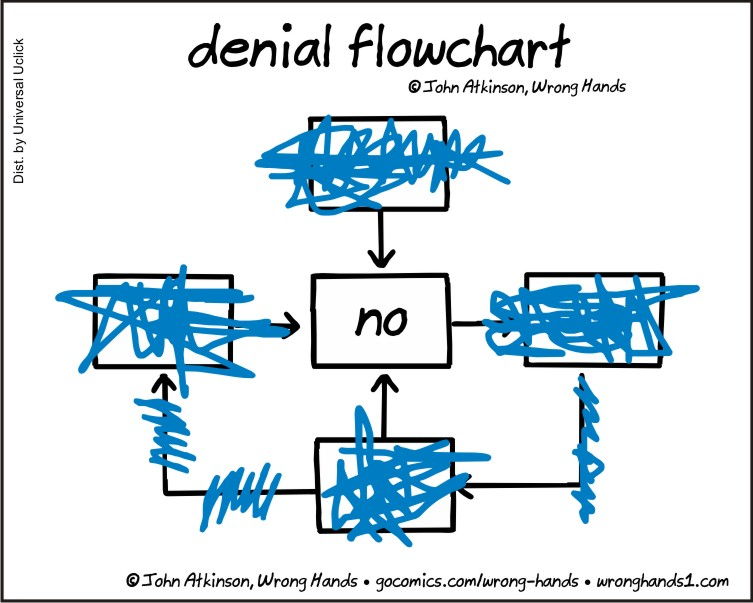 https://wronghands1.files.wordpress.com/2016/10/denial-flowchart.jpg