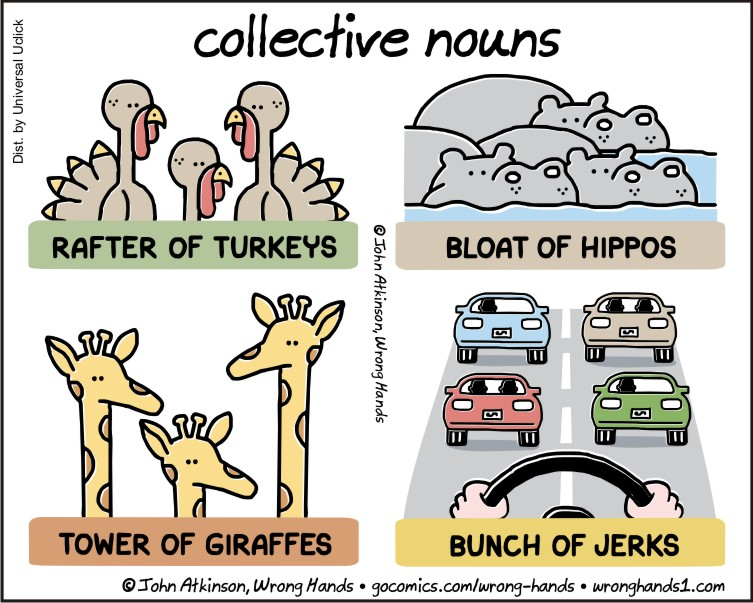 https://wronghands1.files.wordpress.com/2017/10/collective-nouns.jpg