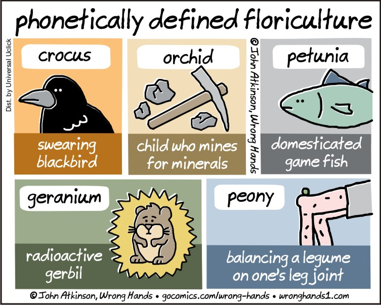 phonetically defined floriculture